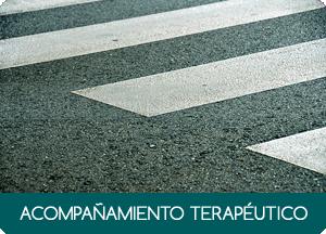 ACOMPAÑAMIENTO TERAPÉUTICO